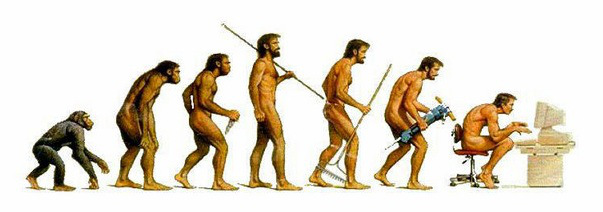 evolutie-mens