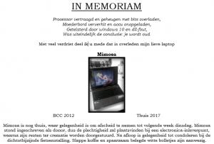 in-memoriam-mimosa